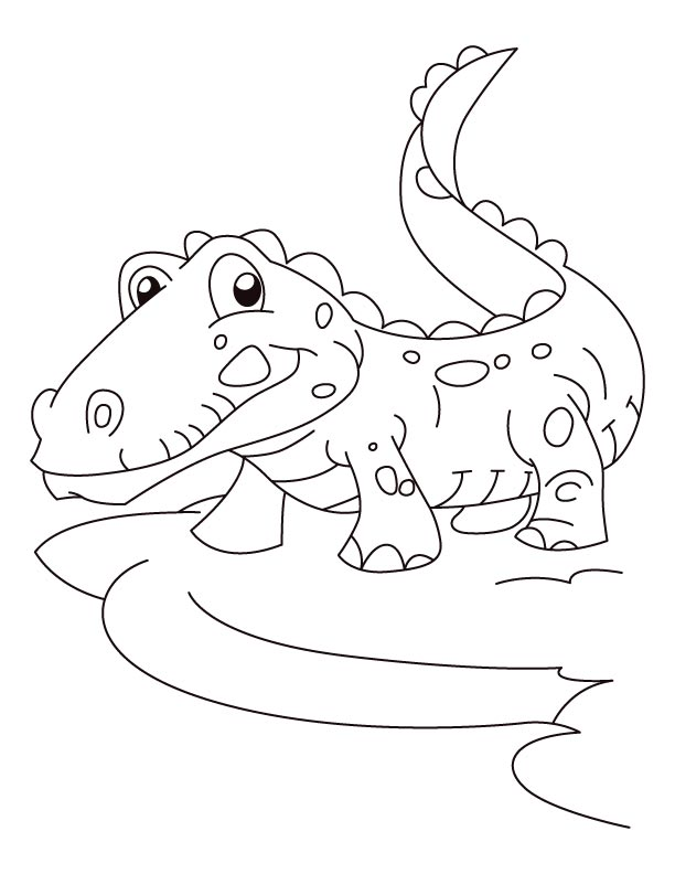 alligator-coloring-page-0024-q1