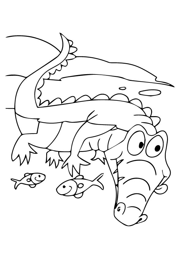 alligator-coloring-page-0027-q2