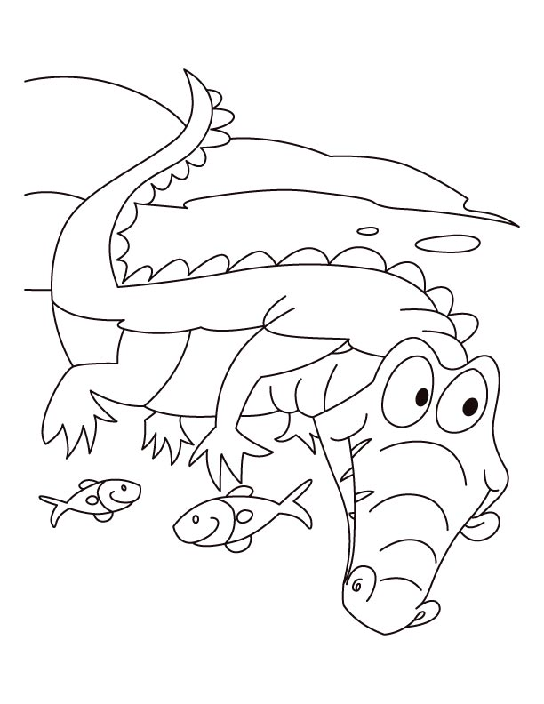 alligator-coloring-page-0030-q1
