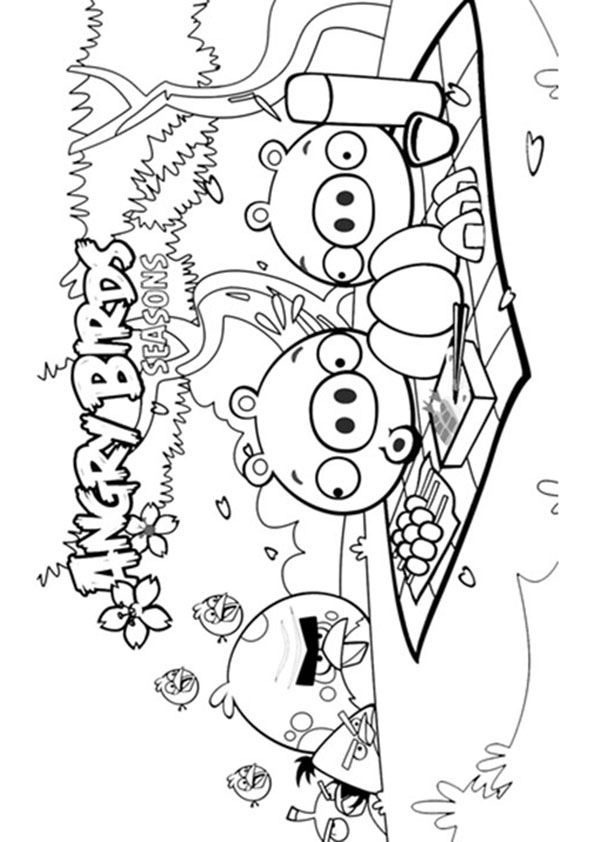 angry-birds-coloring-page-0030-q2