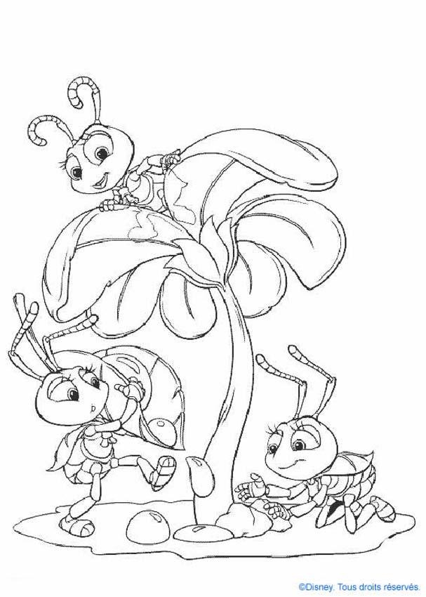 bug-coloring-page-0031-q1