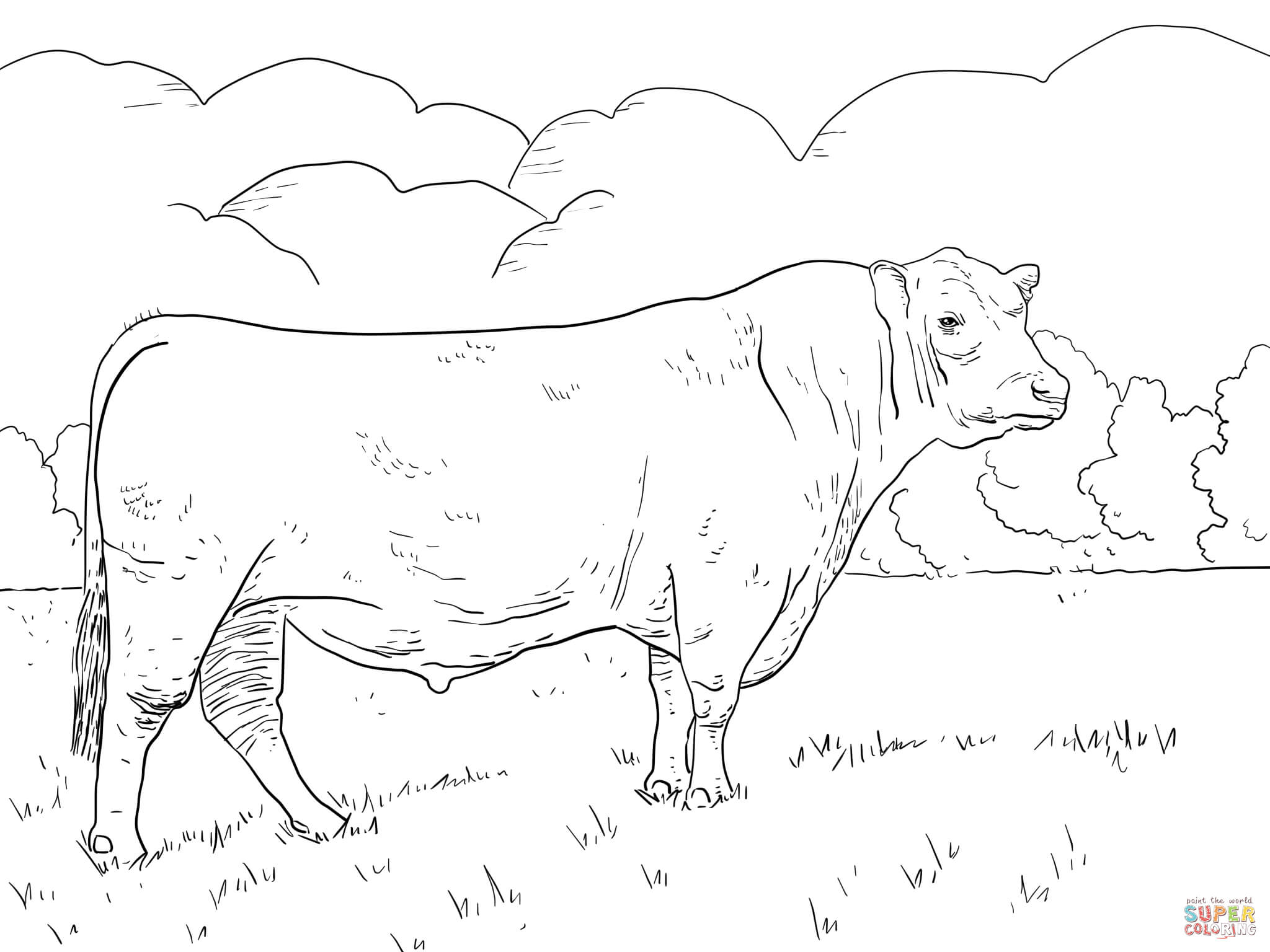 bull-coloring-page-0006-q1
