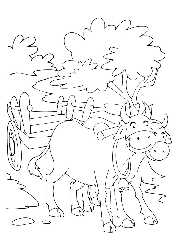 bull-coloring-page-0011-q2