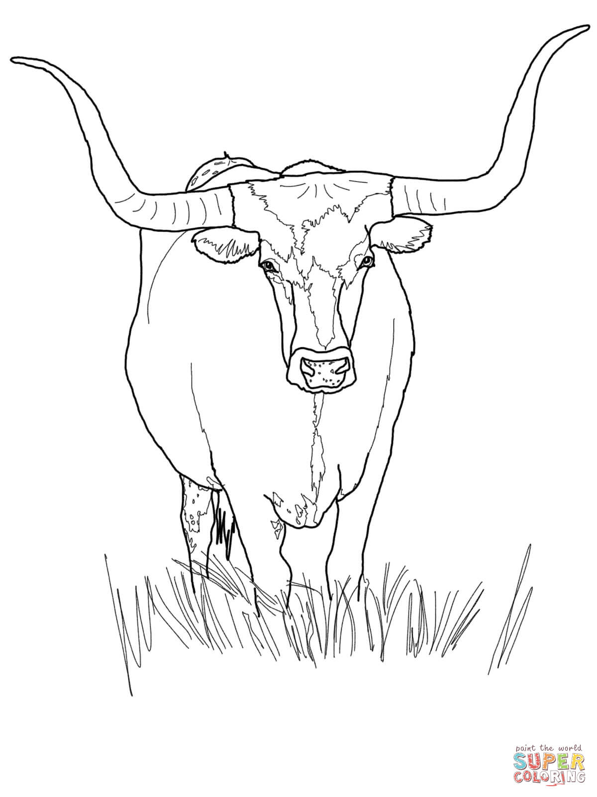 bull-coloring-page-0014-q1