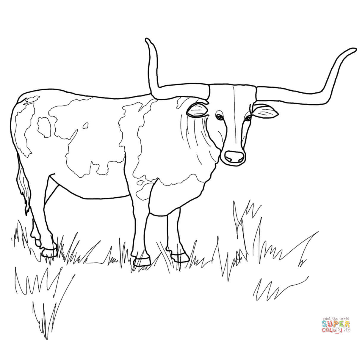 bull-coloring-page-0021-q1