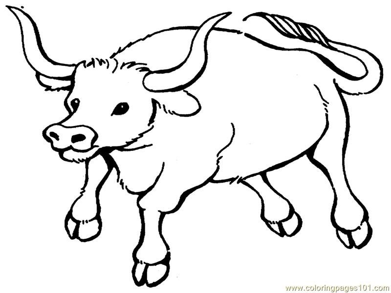bull-coloring-page-0027-q1