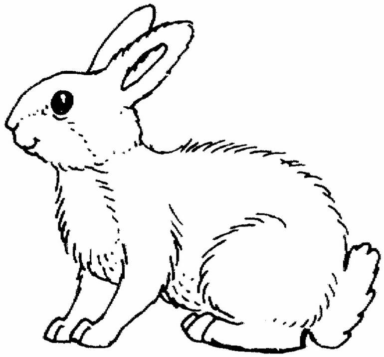 bunny-coloring-page-0030-q1