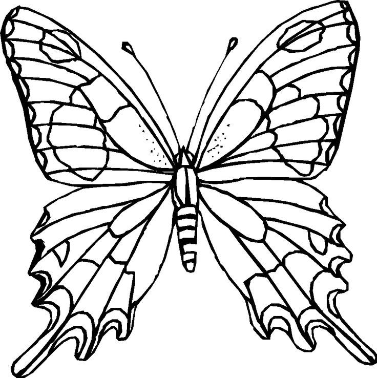 Thousands Of Printable Coloring Pages Books 100 Free
