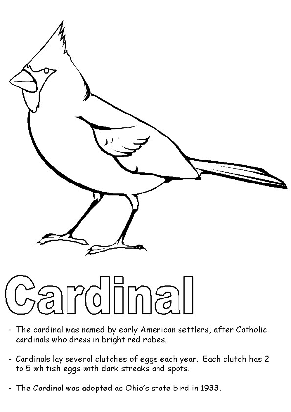 cardinal-coloring-page-0009-q2