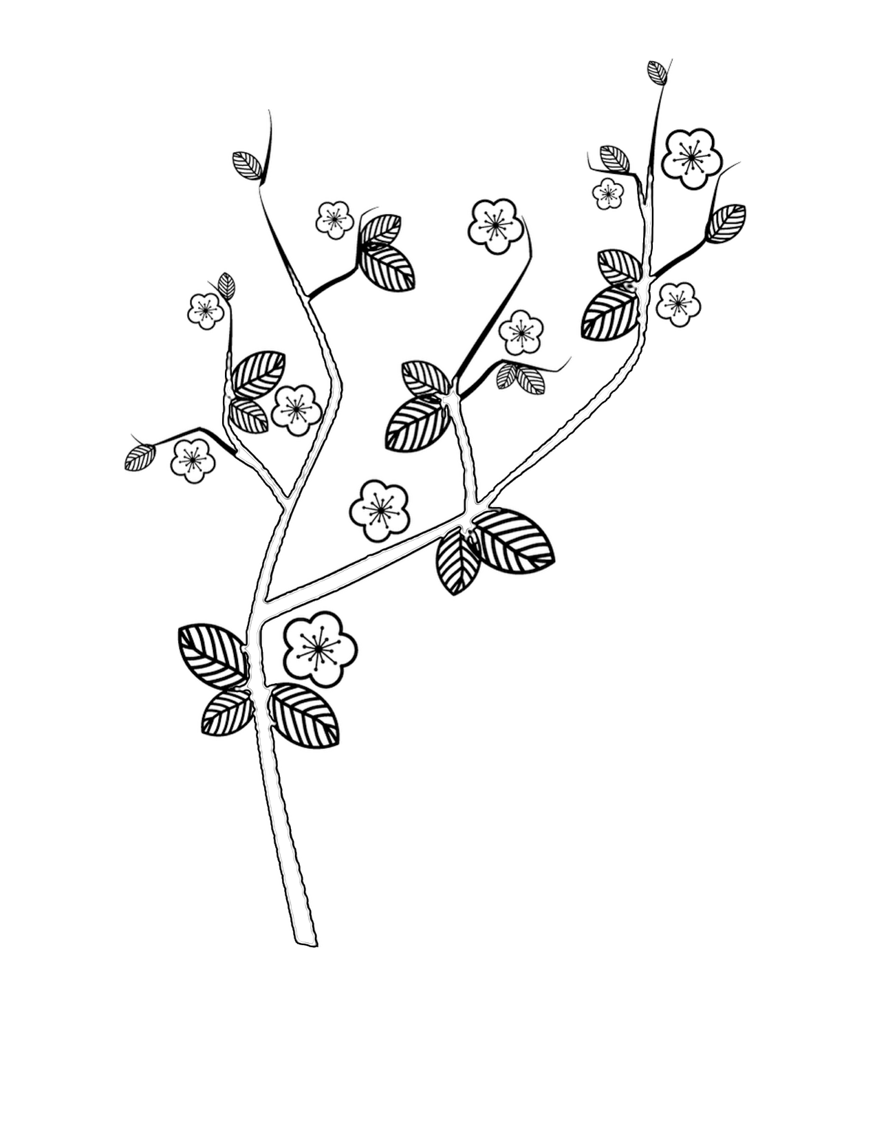 cherry-coloring-page-0002-q1