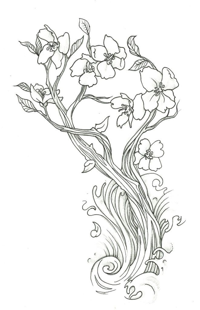 cherry-coloring-page-0011-q1