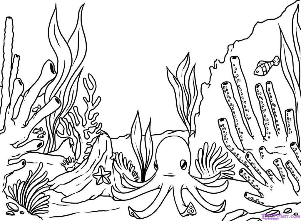 coral-coloring-page-0004-q1