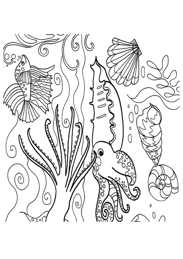 coral-coloring-page-0018-q2