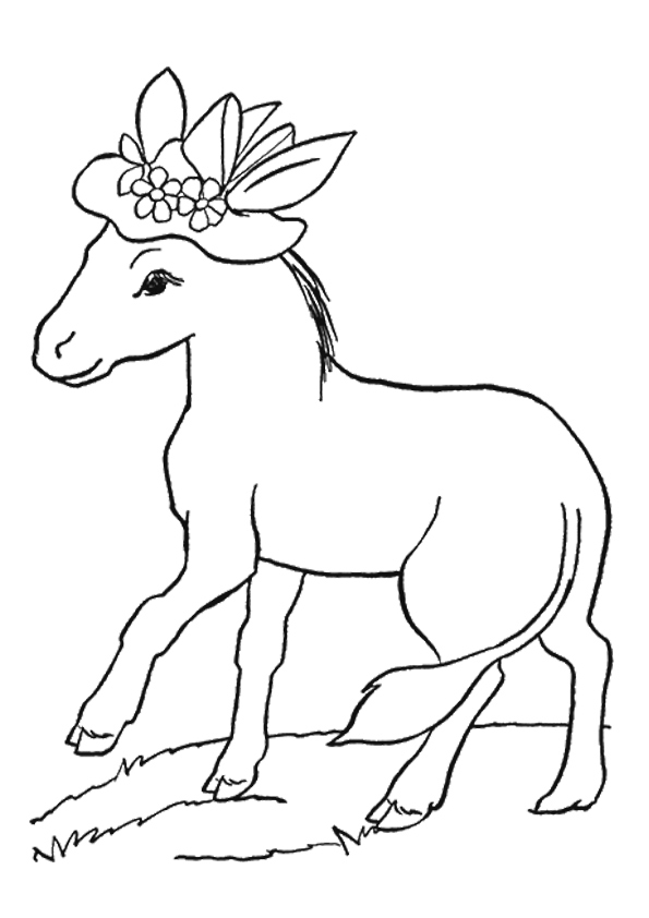 donkey-coloring-page-0008-q2