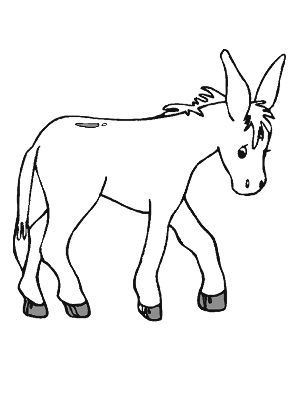donkey-coloring-page-0010-q2