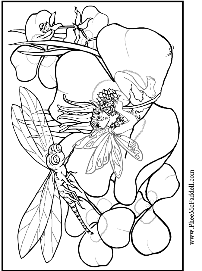 dragonfly-coloring-page-0005-q1