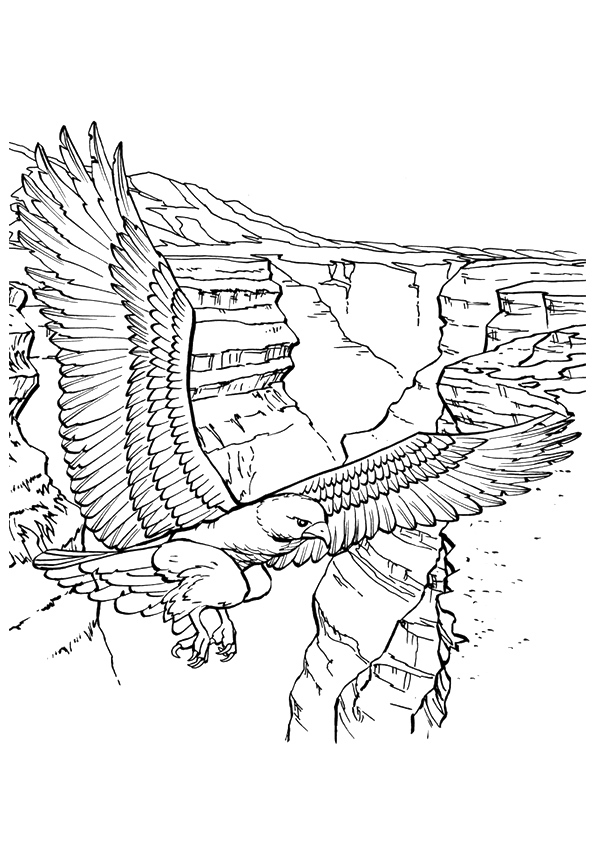 eagle-coloring-page-0001-q2