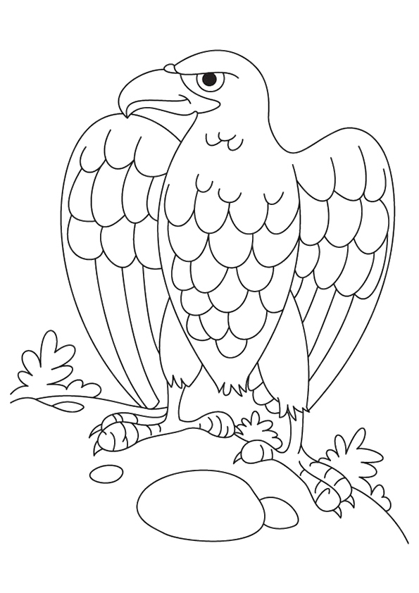 eagle-coloring-page-0007-q2