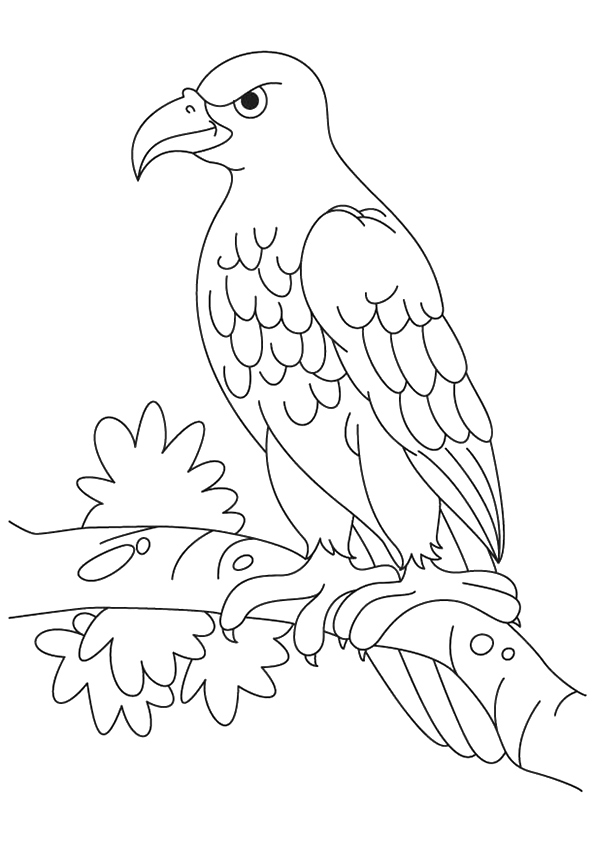 eagle-coloring-page-0010-q2