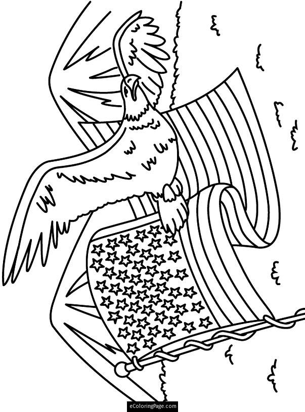 eagle-coloring-page-0011-q1