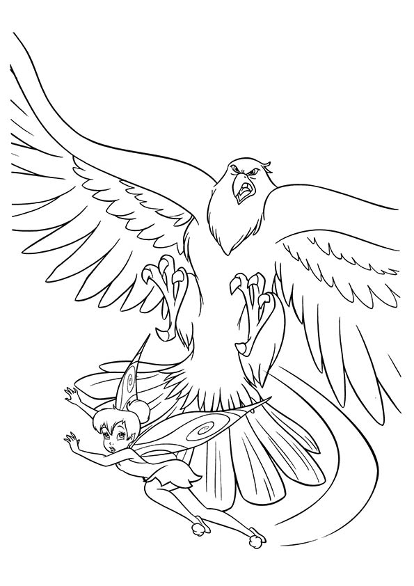 eagle-coloring-page-0025-q2