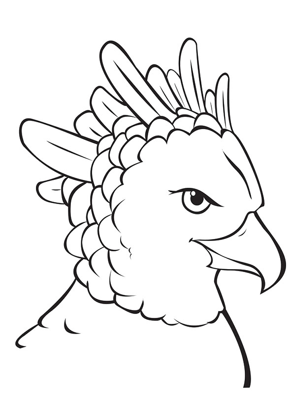 eagle-coloring-page-0029-q2