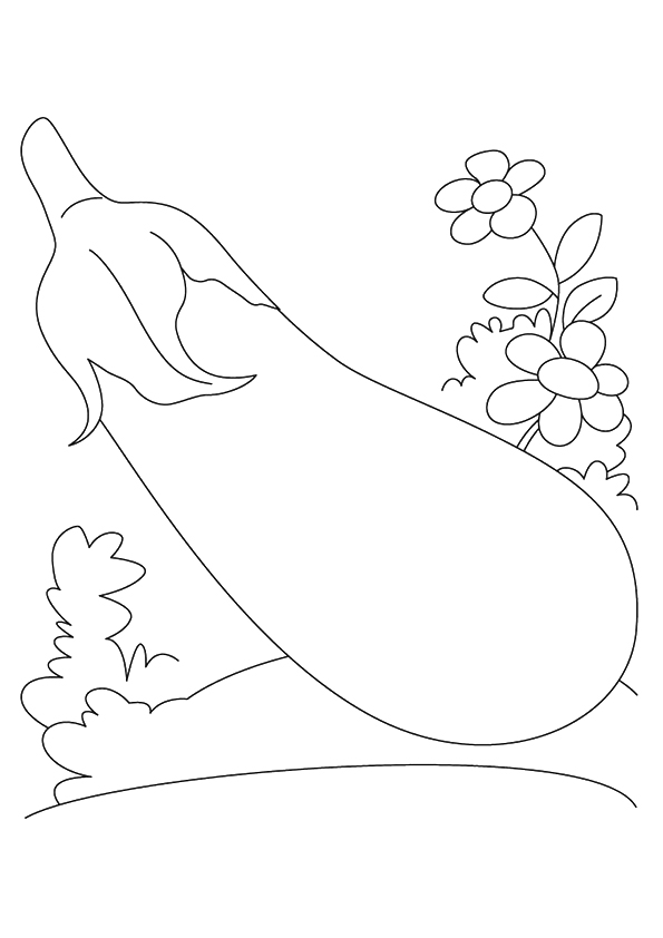 eggplant-coloring-page-0003-q2
