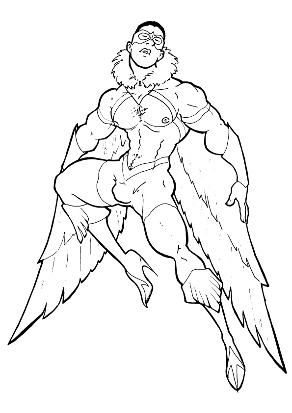 falcon-coloring-page-0004-q2