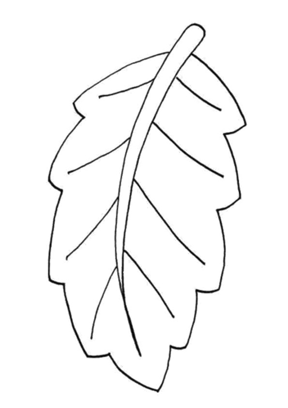 fall-autumn-coloring-page-0020-q2