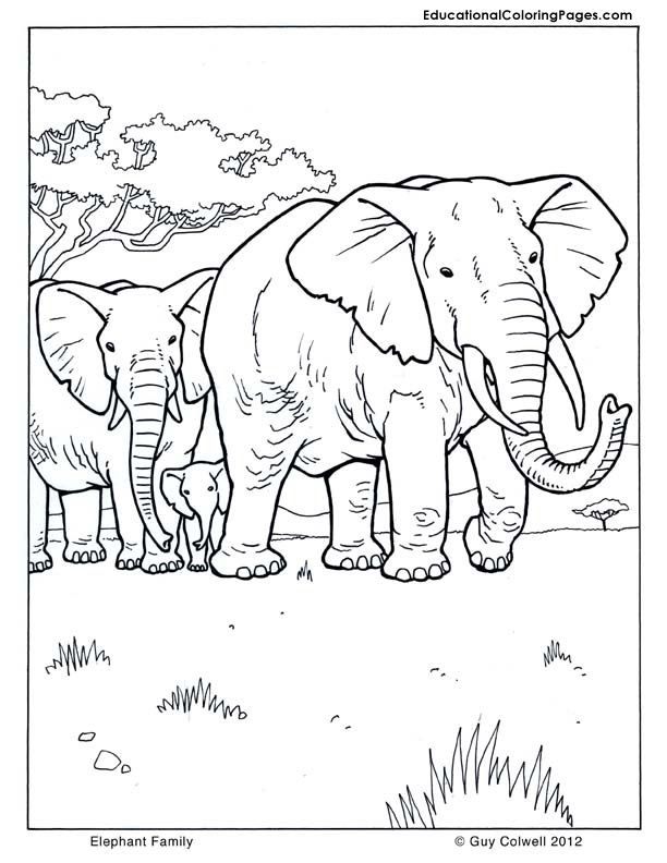 family-coloring-page-0023-q1