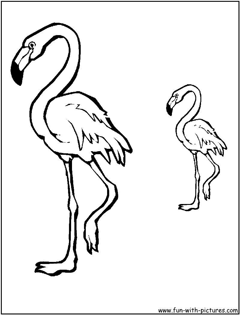 flamingo-coloring-page-0002-q1