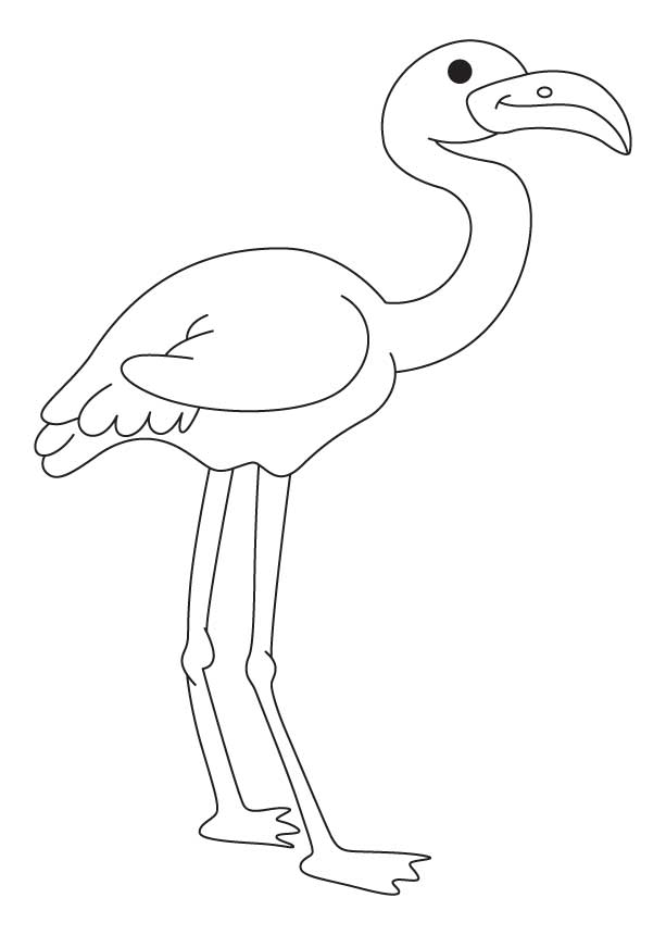 flamingo-coloring-page-0012-q1