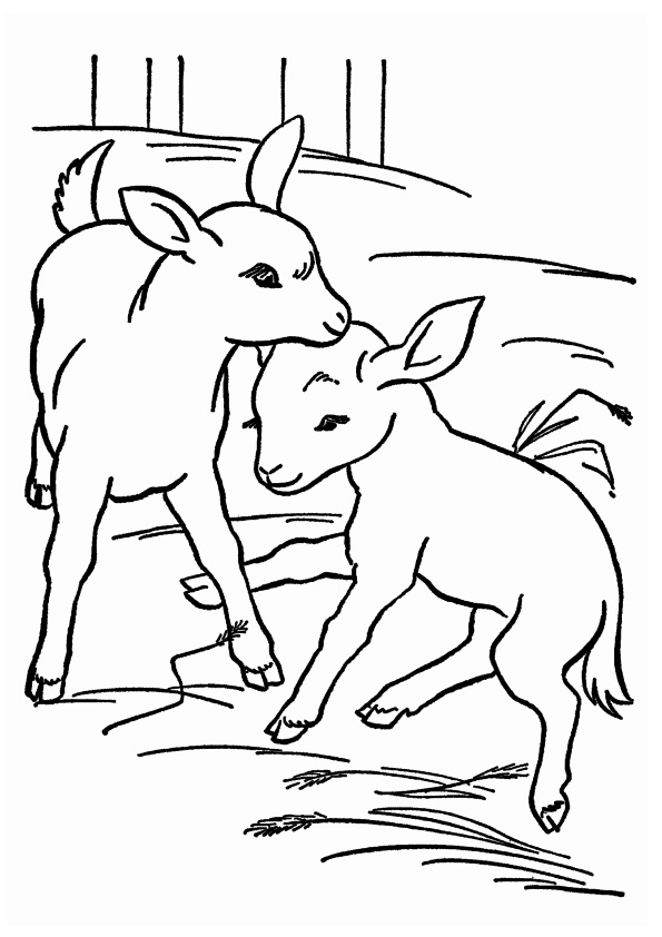 goat-coloring-page-0015-q2