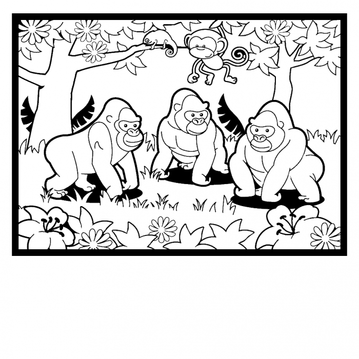 gorilla-coloring-page-0004-q1