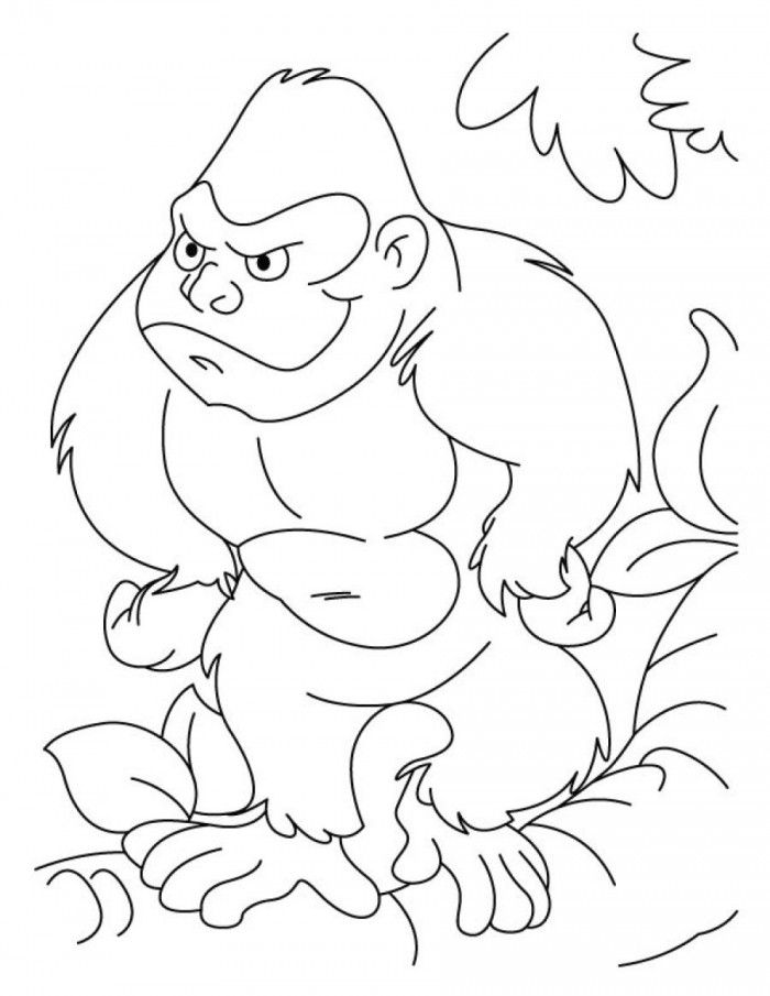 gorilla-coloring-page-0032-q1