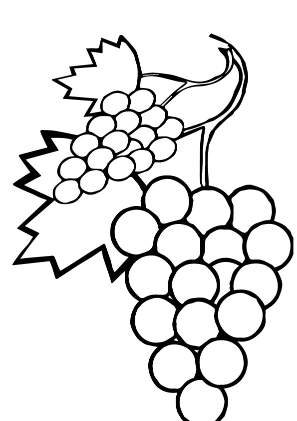 Grapes Coloring Pages Books 100 FREE and printable