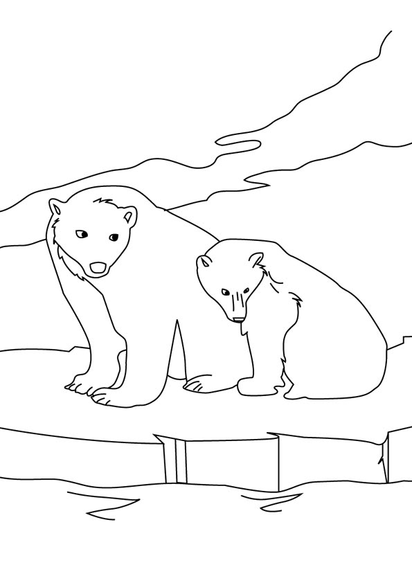 grizzly-bear-coloring-page-0006-q2