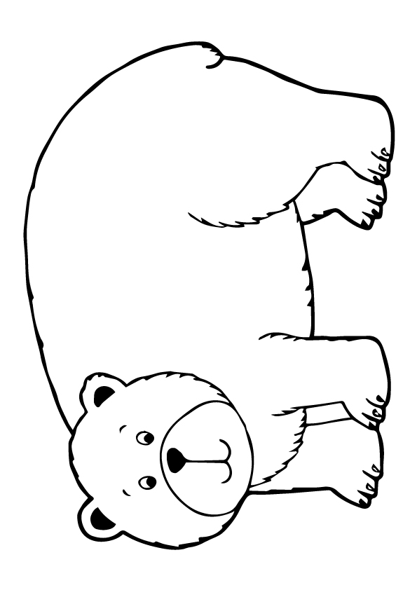 grizzly-bear-coloring-page-0014-q2