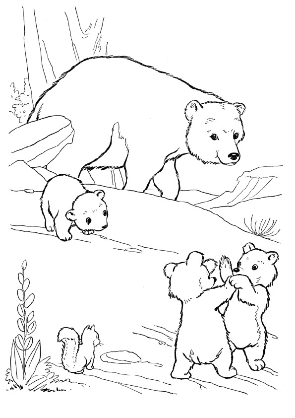 grizzly-bear-coloring-page-0026-q2