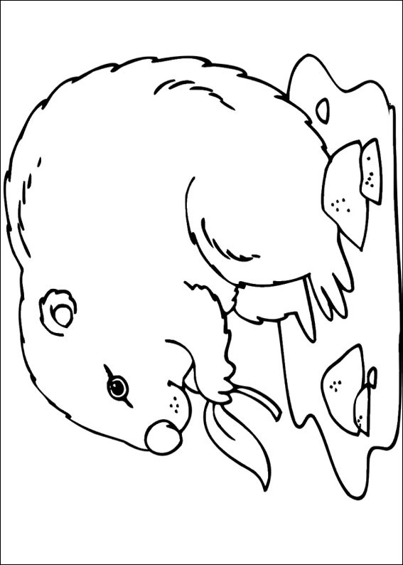 groundhog-day-coloring-page-0024-q5