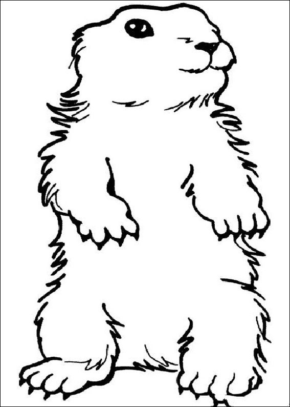 groundhog-day-coloring-page-0028-q5