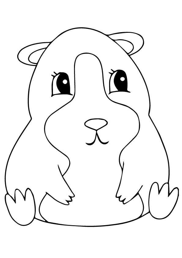 guinea-pig-coloring-page-0005-q2