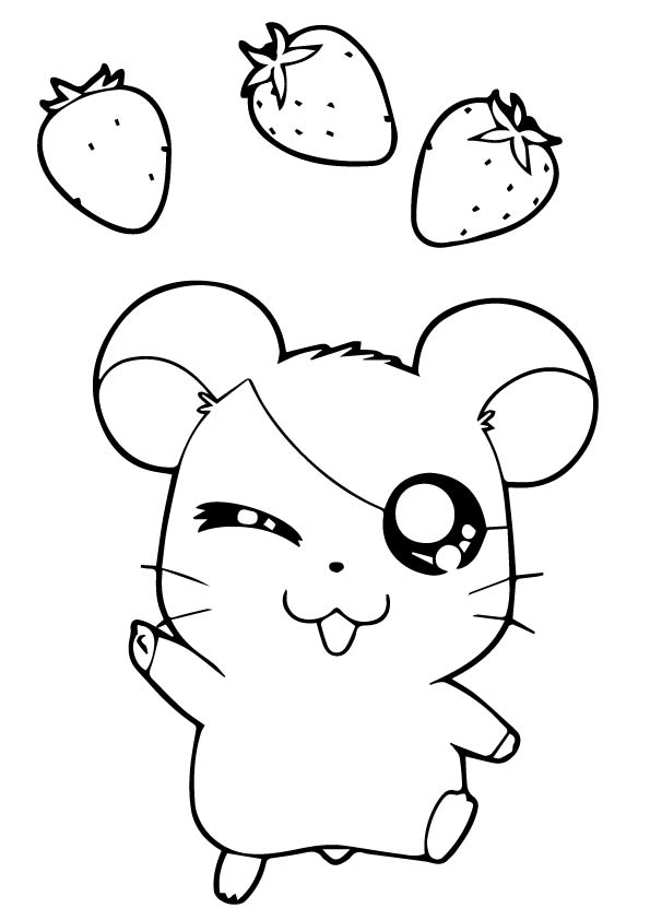 guinea-pig-coloring-page-0008-q2
