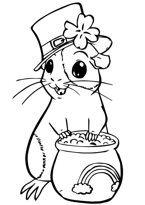 guinea-pig-coloring-page-0012-q2
