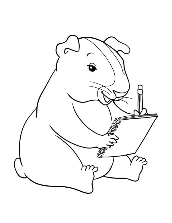 guinea-pig-coloring-page-0014-q1