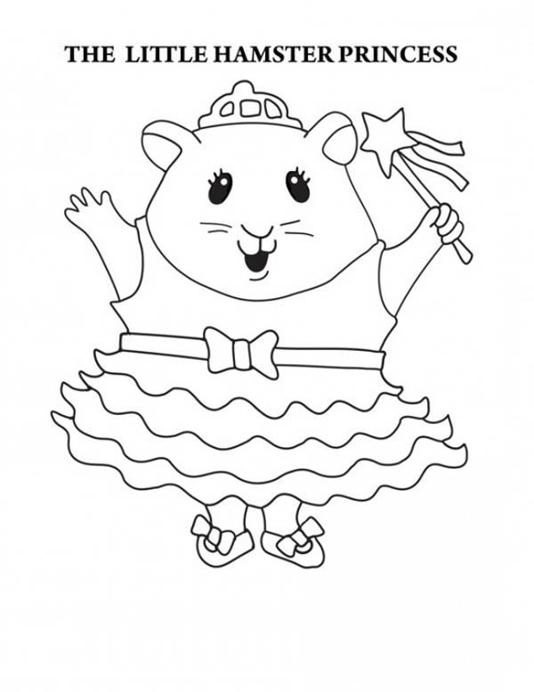 guinea-pig-coloring-page-0017-q1