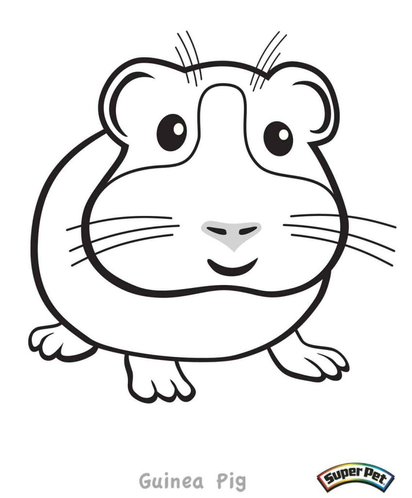guinea-pig-coloring-page-0018-q1