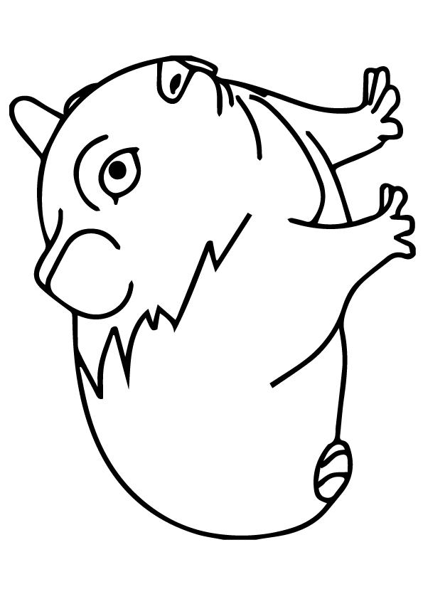 guinea-pig-coloring-page-0025-q2