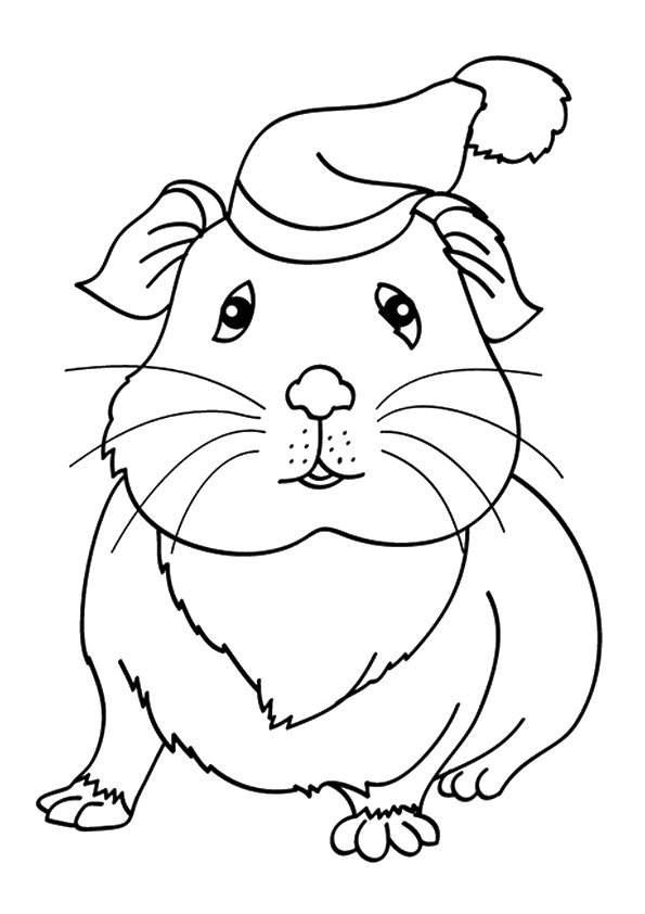 guinea-pig-coloring-page-0026-q2