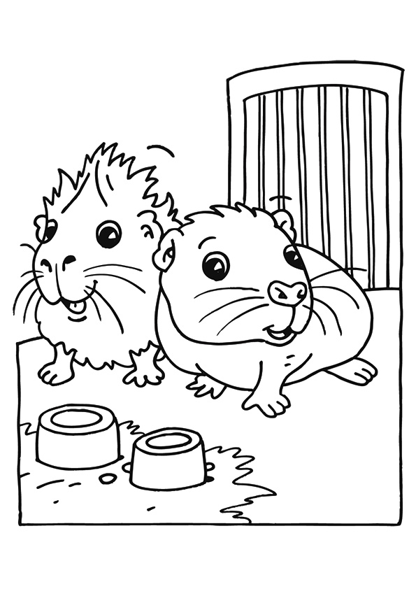 guinea-pig-coloring-page-0030-q2